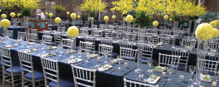 Event rentals in Cherry Hill NJ, Philadelphia, Haddonfield NJ, Marlton NJ, Moorestown New Jersey