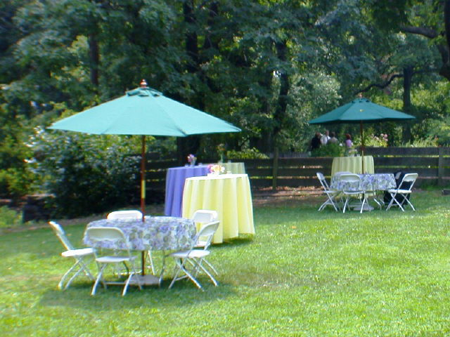 Where to find UMBRELLA  FOR TABLE  - GREEN CLOTH 7 -6 in Philadelphia