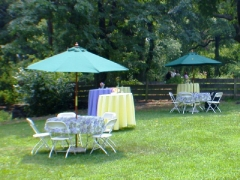 Rental store for UMBRELLA  FOR TABLE  - GREEN CLOTH 7 -6 in Philadelphia PA