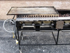 Rental store for GRIDDLE PLATE - PROPANE GRILL 23 X27.5 in Philadelphia PA
